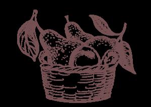 Marmellate biologiche frutta italiana